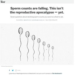 Lower sperm counts don't mean the reproductive apocalypse — yet