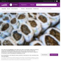 FRANCE CULTURE 26/11/20 LE MONDE VIVANT - Coupable le pangolin ?