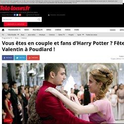 Vous êtes en couple et fans d'Harry Potter ? Fêtez la St Valentin à Poudlard !