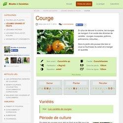 Culture, semis et récolte au potager