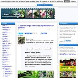 11 tips om langer van uw courgetteplanten te genieten. – GroentenInfo