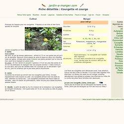 Courgettes : fiche jardinage détaillée sur la culture des courges et courgettes