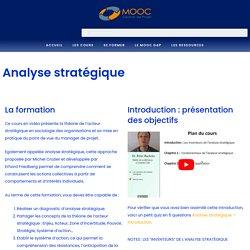 Cours d'analyse stratégique des projets