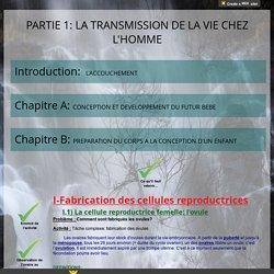 4ème_Partie 1_Chapitre B