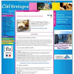 Cours de français des examens. Delf, Dalf,dilf et TCF