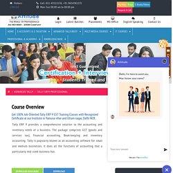 Best Tally ERP 9 Course in Yamuna Vihar