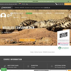 Online Courses - Wildlife Conservation