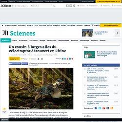 Un cousin à larges ailes du vélociraptor découvert en Chine