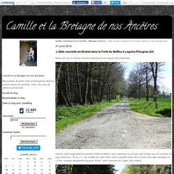 L'allée couverte du Brohet dans la Forêt du Beffou à Loguivy-Plougras (22) - Camille et la Bretagne de nos Ancêtres