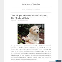 Cove Angels Breeders Inc and Dogs For The Mind and Body