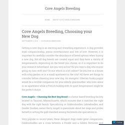 Cove Angels Breeding, Choosing your New Dog