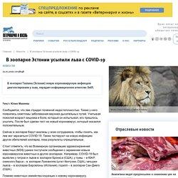 VETANDLIFE_RU 21/01/21 TRAD AUTO : Lion avec COVID-19 euthanasié au zoo estonien