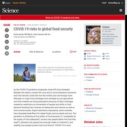 COVID-19 risks to global food security