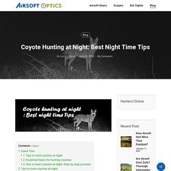 Coyote Hunting at Night: Best Night Time Tips - Airsoft Optics