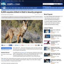 6,000 coyotes killed in Utah's bounty program
