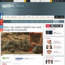 Mars: un crabe repéré sur une image de Curiosity