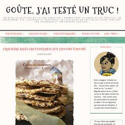 Crackers salés croustillants aux flocons d'avoine - Goûte, j'ai testé un truc !