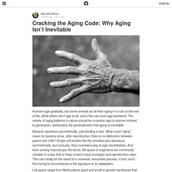 Cracking the Aging Code: Why Aging Isn't Inevitable