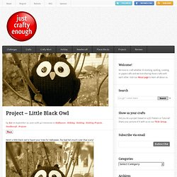Little Black Owl