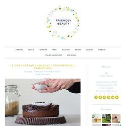 Le gros gâteau chocolat / cranberries / framboises