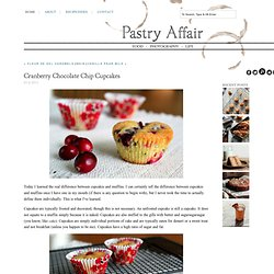 The Pastry Affair - Home - Cranberry Chocolate Chip Cupcakes