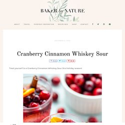 Cranberry Cinnamon Whiskey Sour - Baker by Nature