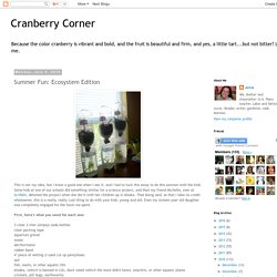 Cranberry Corner: Summer Fun: Ecosystem Edition