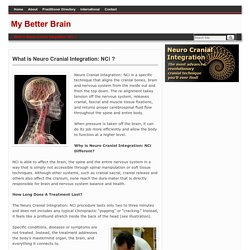 What is Cranial Spinal Integration (CSi)?