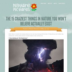 The 15 Craziest Things In Nature You Won't Believe Actually Exist