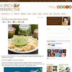 Creamy Roasted Tomatillo Salsa Verde Recipe