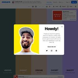 Create a palette - Coolors