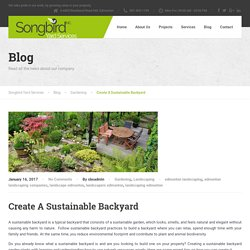 Attractive And Sustainable Backyard Designing