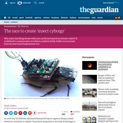 The race to create 'insect cyborgs'
