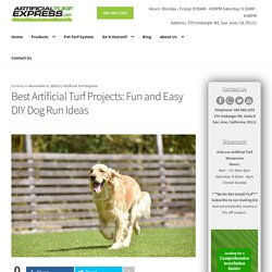 How to Create DIY Dog Runs Using the Best Artificial Turf