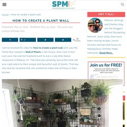 How to create a plant wall - STOCKPILING MOMS™