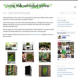 Create your own Vertical Garden - Living walls and Vertical Gardens