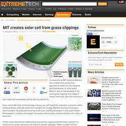 MIT creates solar cell from grass clippings