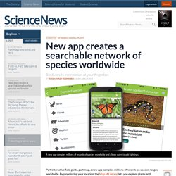New app creates a searchable network of species worldwide
