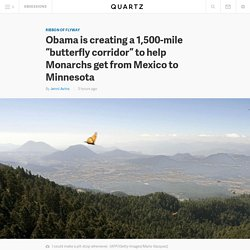 "Obama is creating a 1,500-mile ""butterfly corridor"" to help Monarchs get from Mexico to Minnesota"
