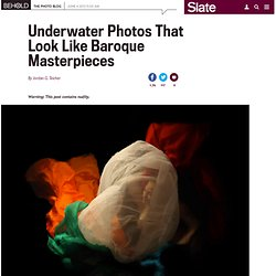 Christy Lee Rogers: Creating original Baroque-style underwater imagery (PHOTOS).