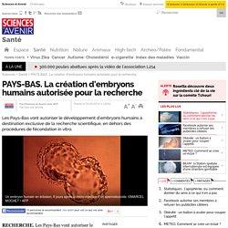 PAYS-BAS. La création d'embryons humains autorisée pour la recherche