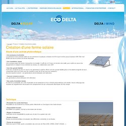 Création d'une ferme solaire - ECO DELTA DEVELOPPEMENT