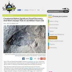 Creationist Makes Significant Fossil Discovery And Won't Accept That It's 60 Million Years Old