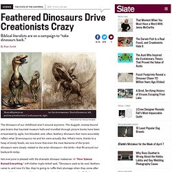 Creationists and dinosaurs: Answers in Genesis teams with dissident scientists to deny feathered dino fossil record