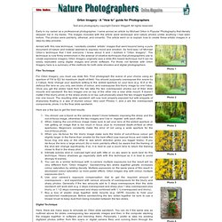 Creative Nature Photography - Orton Imagery