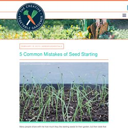 Creative Vegetable Gardener:5 Common Mistakes of Seed Starting - Creative Vegetable Gardener