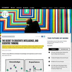 The Secret To Creativity, Intelligence, And Scientific Thinking