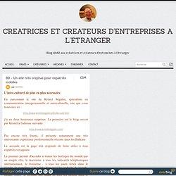 80 - Un site très original pour expatriés mobiles - CREATRICES ET CREATEURS D'ENTREPRISES A L'ETRANGER