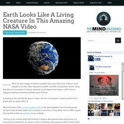 Earth Looks Like A Living Creature In This Amazing NASA Video