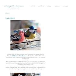 Abigail Brown: creature textile designer extraordinaire - news